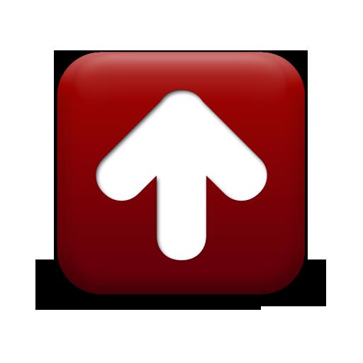 NMDB-Network Motif Database